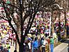 201703012marathon01m